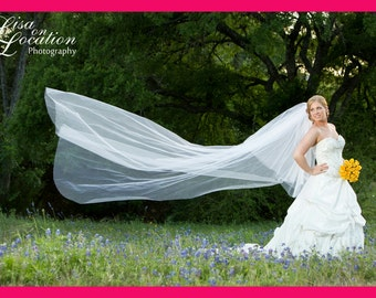 Elegant Cathedral veil with blusher