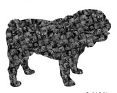 Custom Silhouette Illustration Photo Mosaic Collage - Dog Breed: English Bulldog - 20x20 Inch - Wall Art - Wall Decor