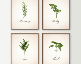 Kitchen Decor - Kitchen Wall Decor - Kitchen Art Signs Set of 4 with Cooking Herbs - Herbs Art - Food Signs - Basil Sage Rosemary Parsley