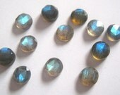 Lot of Stunning 25 Pieces AAA Quality Labradorite 5X5 mm round Rose Cut Cabochon Loose Gemstone Calibrated