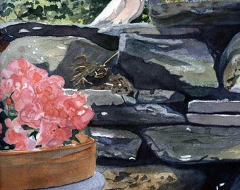Dove On A Rock Wall Greeting Card