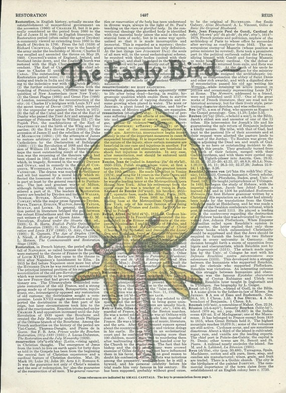 Book Print The Early Bird on Vintage Upcycle Book Page Print Art Print Dictionary Print Collage Print