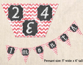 Baby Monthly Banner - Printable Chevron Design