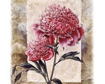 Peony  Flower Floral T SHIRT, Sweatshirt, Quilt Fabric Block  Item no. 797d