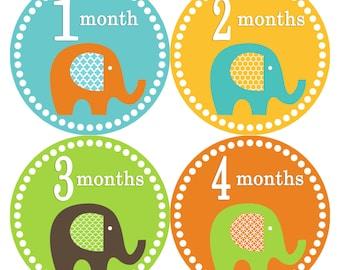 Monthly Baby Milestone Stickers Baby Boy Baby Shower Gift One-Piece Baby Stickers Monthly Baby Stickers Baby Month Sticker 133