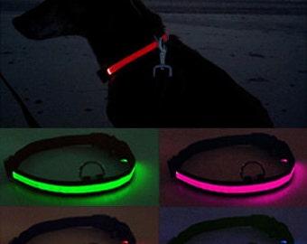 LED Dog Collars - Battery Powered