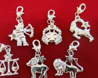 12pc set zodiac charms in antique silver style (BC349)