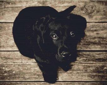 Black Dog PDF Cross Stitch Pattern