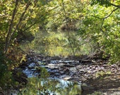 Beautiful stream tucked away in the woods offers serenity in thought.
