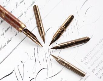 Vintage Calligraphy plumes ink nibs Set of 5