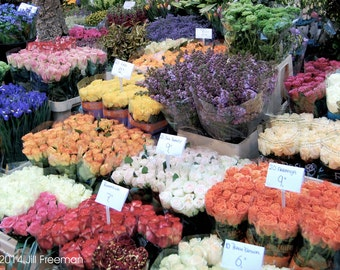 Flower Market, Amsterdam - Photo Print