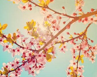 Dreamy Botanical Print, Spring Sakura Cherry Blossoms, Flower Photography, Romantic Pastel, Nature - Print