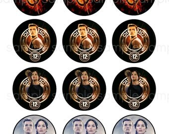 Erica's Sweet Tooth » Hunger Games Cupcakes