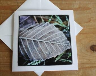 Frosty Leaf - Greeting Card