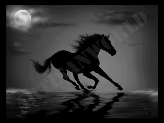 Moonliight Horse