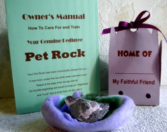 PET ROCK w carrying case, training manual n Bed, Revisit Vintage Fad -Great Gift