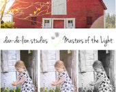 Masters of the Light Lightroom Presets