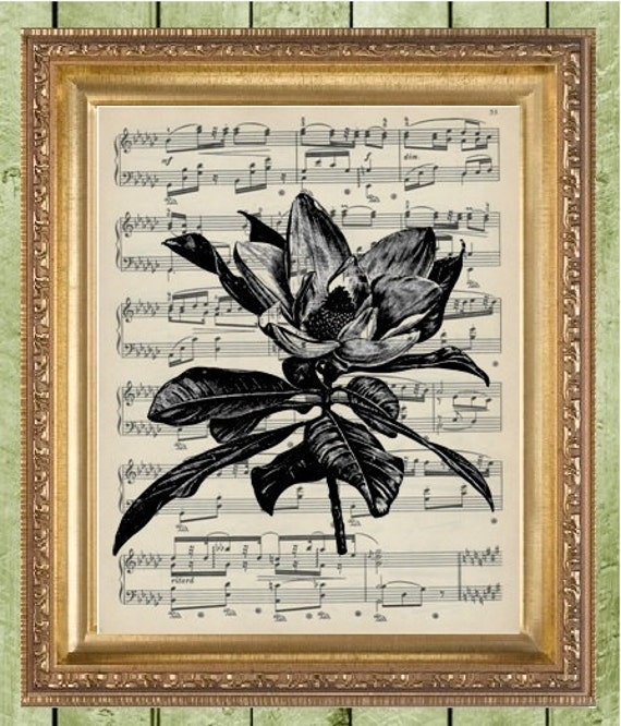 Piano Music Wall Decor : Sheet music wall decor art print magnolia on