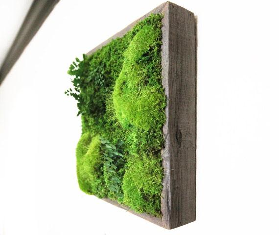 pflanze malerei keine pflege gr ne wand kunst von artisanmoss. Black Bedroom Furniture Sets. Home Design Ideas