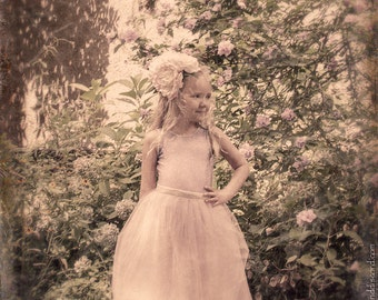 Rose Princess, Fine Art Photography Print