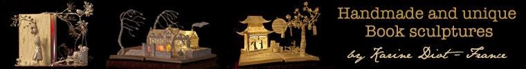 AnemyaBookSculptures