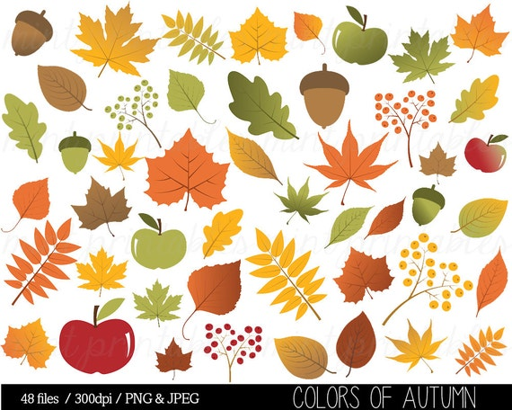 Window Color Herbst Blatt: Autumn Leaf Clipart Fall Leaves Clip Art Thanksgiving