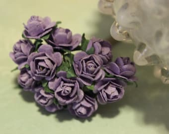 Purple Mulberry Roses