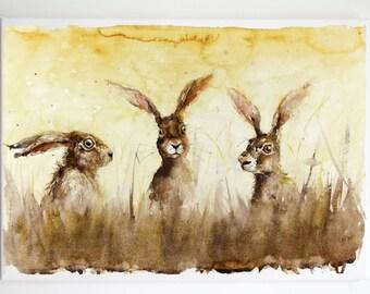 The Sun Hares
