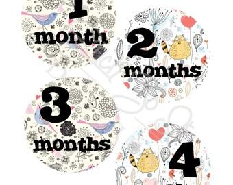 Milestone Stickers, Baby Month Stickers, Monthly Stickers, Monthly Baby Stickers, Baby Shower Gifts, Baby Month Sticker Gender Neutral, U03