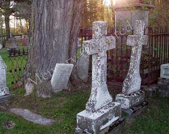 TOMBSTONE in TREE Cemetery Photo at Sunset St Andrew's Argenteuil QC Canada Digital Download