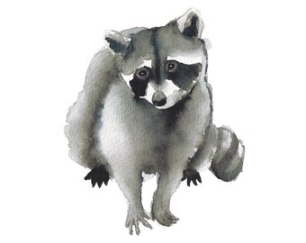 Watercolor Raccoon art print woodland nursery art watercolor art nature art animal art watercolor animal gray grey black white 5x7 8x10...