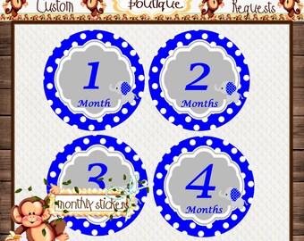 Elephants Monthly Baby Milestone Stickers Baby Shower Gift Bodysuit Baby Stickers Monthly Baby Stickers Baby Month Sticker {M250}