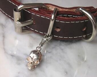TOM K Dog Cat Collar Skull Bone toy Treats