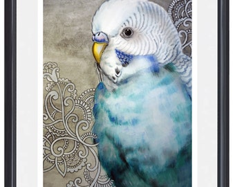 Teal Parakeet Watercolour Art Print