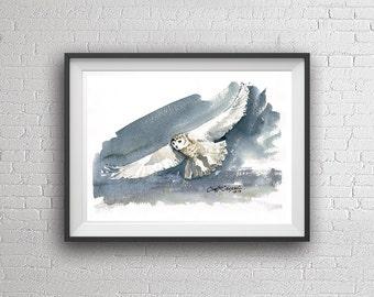 Watercolor Owl (Print)