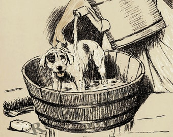 "Cecil Aldin  ""Bath Day""  1902 Reproduction Digital Print Wall Hanging Animal Print Dog Jack Russell"