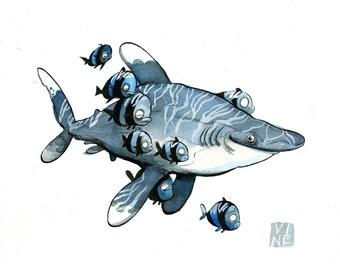 Oceanic Whitetip Shark /  Giclee of watercolor by JP Vine, 9 x 12 in