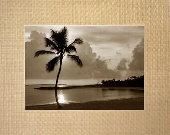 Sway Palm Bay - Paradise Island, Bahamas