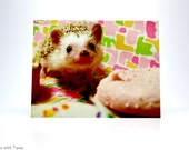 Hedgehog with Cupcake Postcard, set of 2, Katniss Hearts Cupcakes