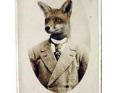 Young Mr. Fox,  8.5x11 Inch Print - Fox Print