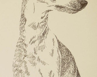 Whippet dog art portrait drawing from words. Your dog's name added into art FREE. Great gift. Signed Kline 11X17 Lithograph 84/500.