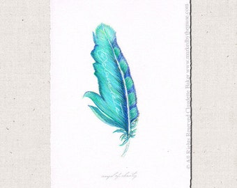 Angel Feather Drawing Angel Of Clarity
