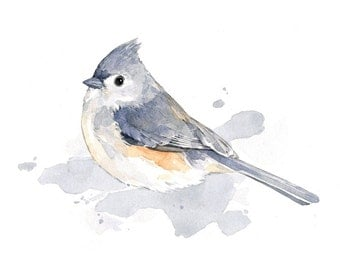 Tufted Titmouse Print - bird watercolor painting 5x7