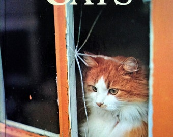 1978 CATS KITTENS ILLUSTRATED Book