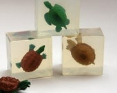 Glycerin Turtle Soap for Christmas and Birthday Gifts Reptile Lovers