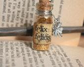 Glass Vial Potion Harry Potter Felix Felicis necklace