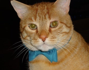 Satin Bow Tie for Dogs or Cats - Custom Made Any Size - You Choose Color