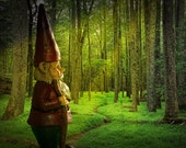 Garden Gnome Traveler hiking on the Path's Journey through a Sunlit Forest with Sun Beams a Surreal Fantasy Photograph