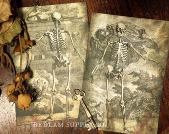 Memento Mori - Pair of Death Prints