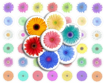 Gerber Daisies Bottlecap Images / Gerbera Daisy Flowers in Jewel Tones / Printable Digital Collage / 1-Inch Circles for Bottle Cap Images